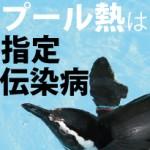 【夏に続く高熱!】 インフルエンザじゃなければプール熱かも!