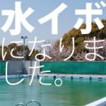 【夏にプールに入れない病気】 水いぼの治療は地道だよ