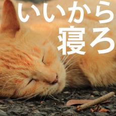 寝かしつけ・眠りが浅い・寝ない!